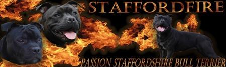 Staffordfire_ban.jpg
